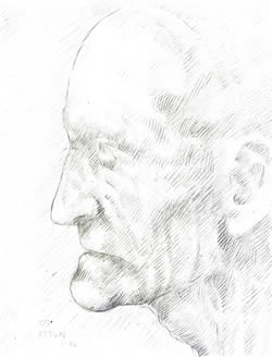 Profile of an Old Man silverpoint